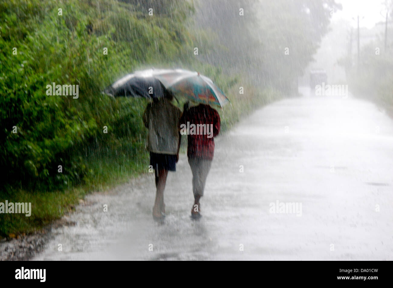 heavy rainy day A rainy day is a great experience of many of us different person or student enjoy the rainy day with different style some student become full of joy if heavy.