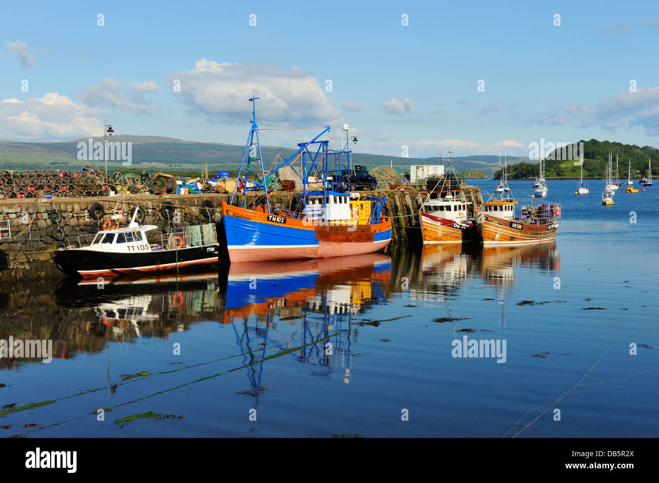 Colourful Fishing Boats In Tobermory Harbour Island Of