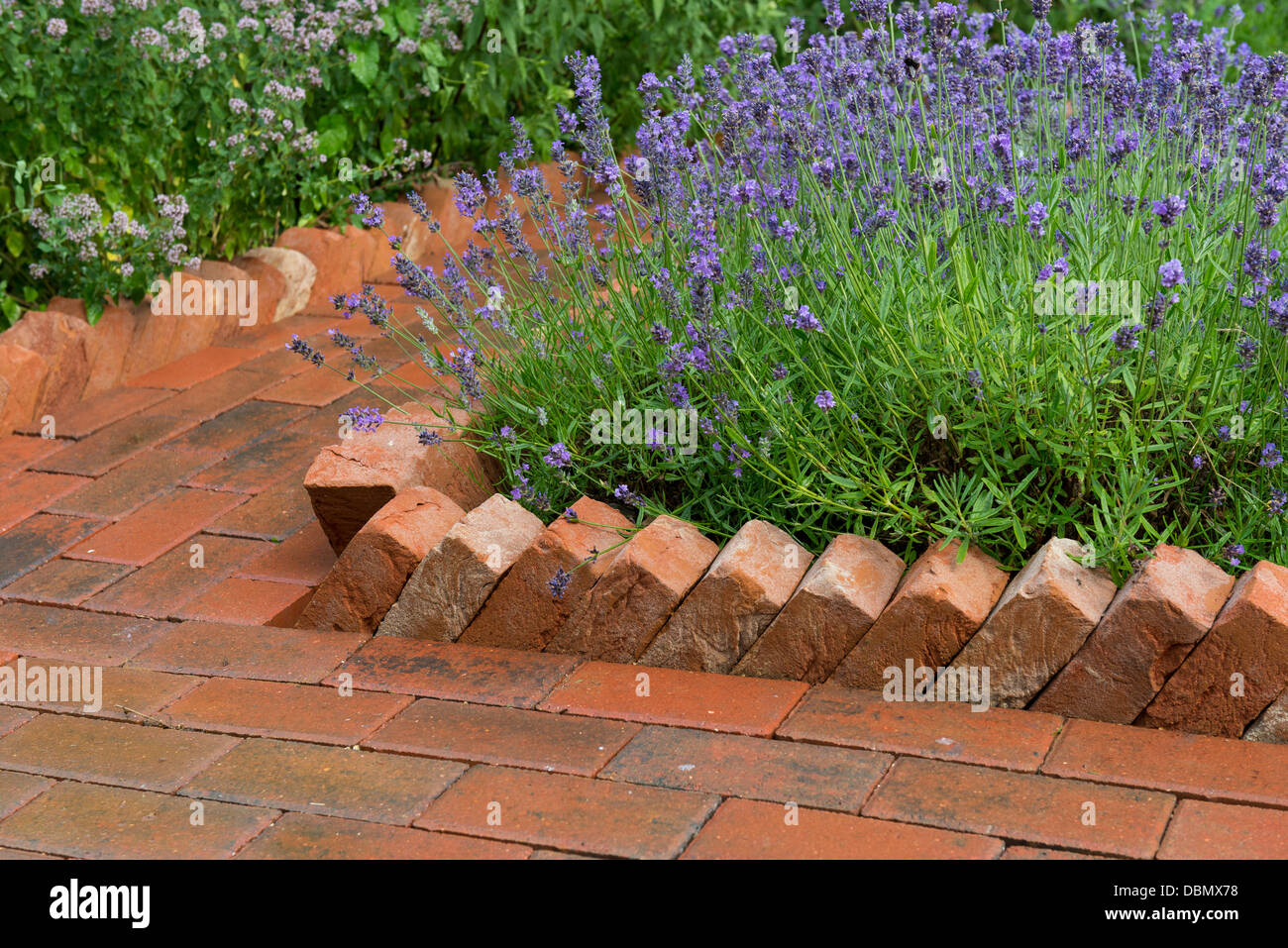 Garden path constructed from concrete pavers with a saw for Brick garden border designs