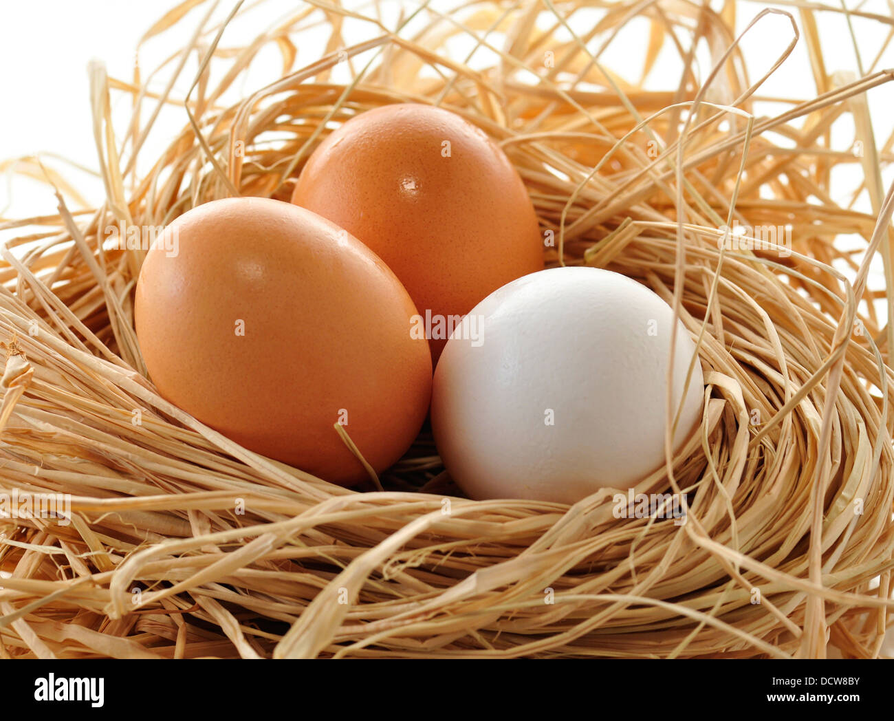 Девушка отрывающая яйца фото