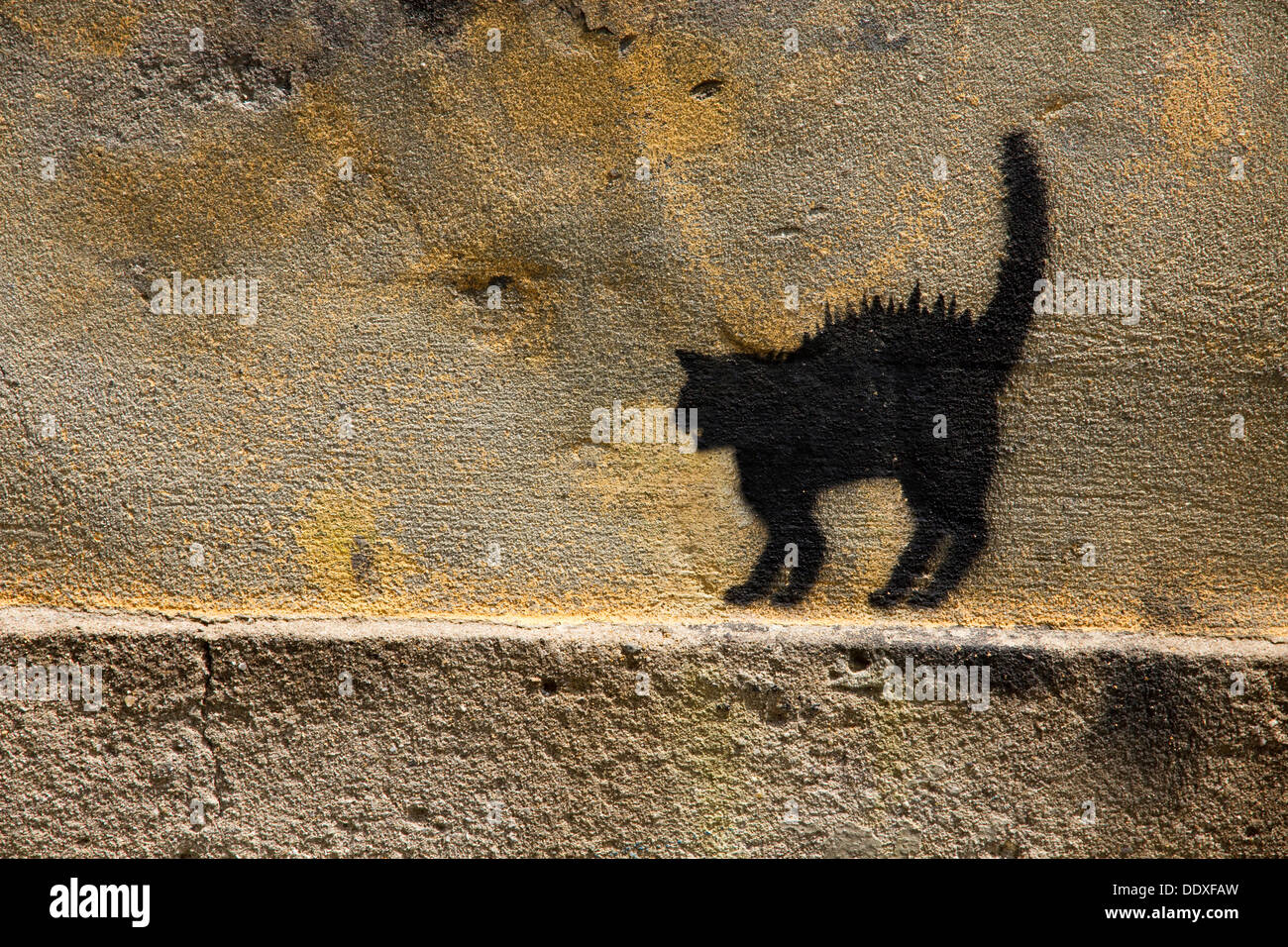 outline-of-cat-painted-on-rough-wall-in-