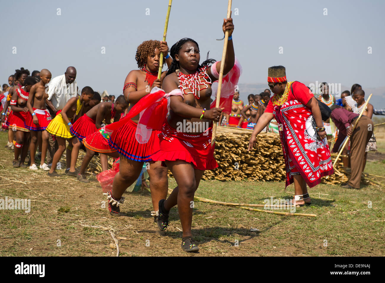 Zulu maidens deliver reed sticks to the King, Zulu Reed ...