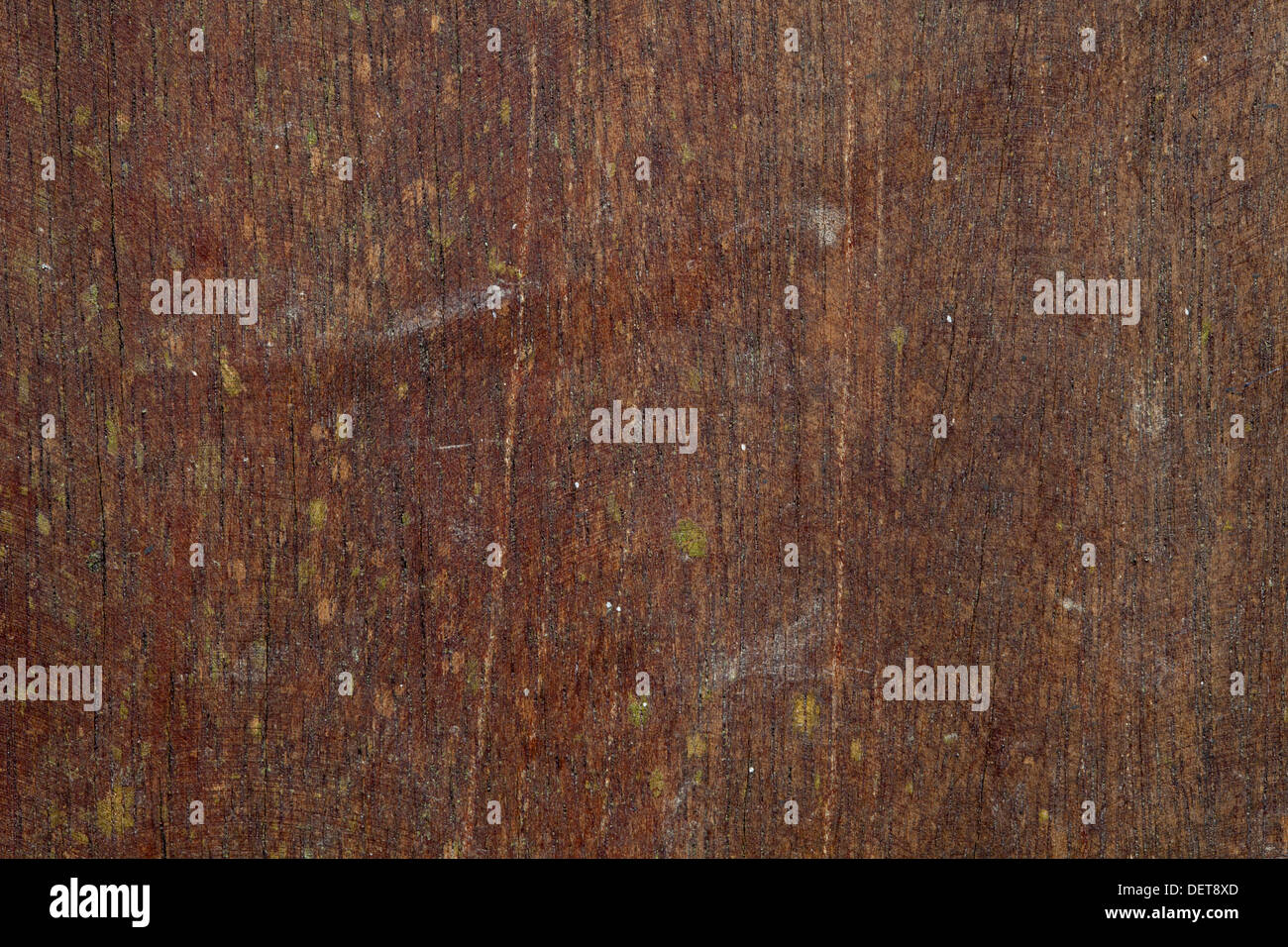 Line Texture Color : Wood texture color shape volume line contrast background