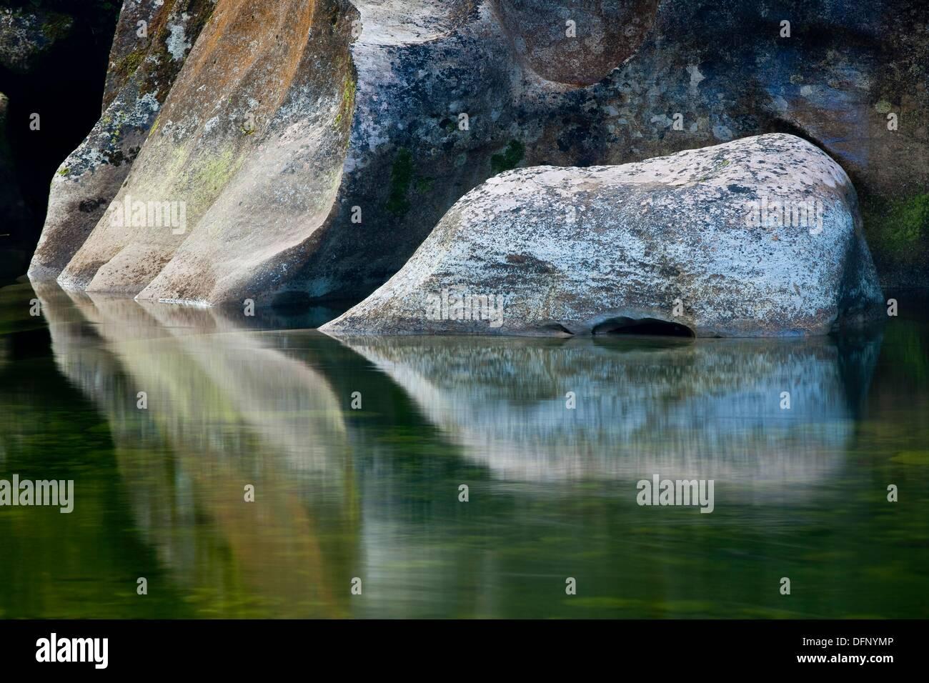 Fox New Rock Island