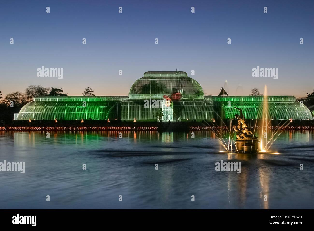 christmas-lights-display-palm-house-and-