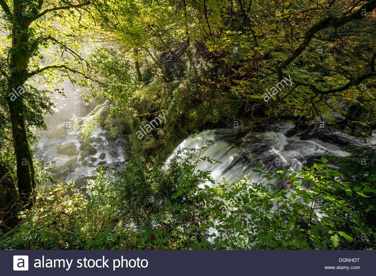 les-cuves-de-sassenage-the-furon-canyon-