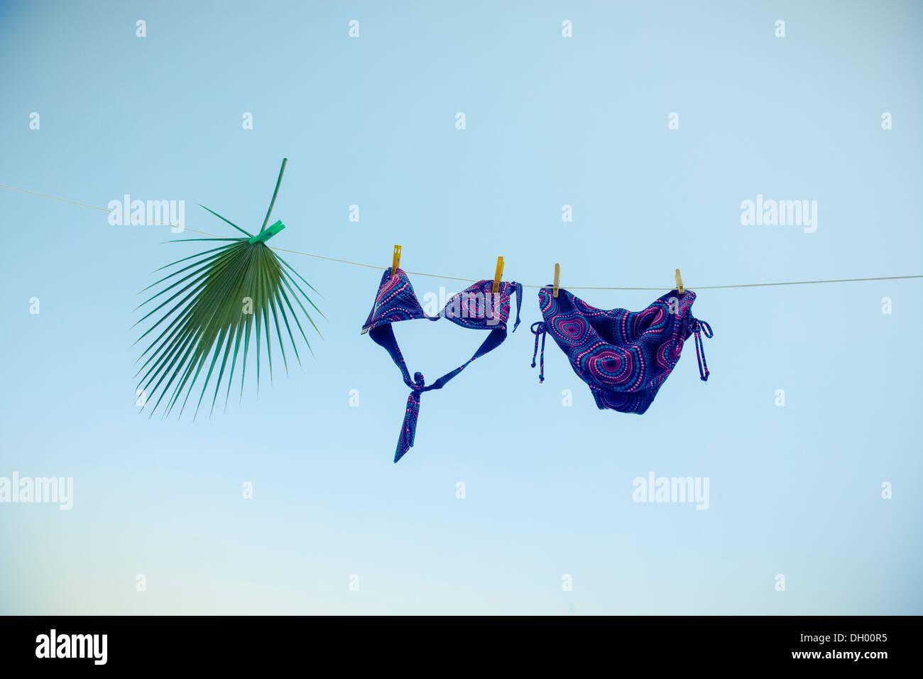 a-bikini-and-fan-palm-leaf-on-a-washing-