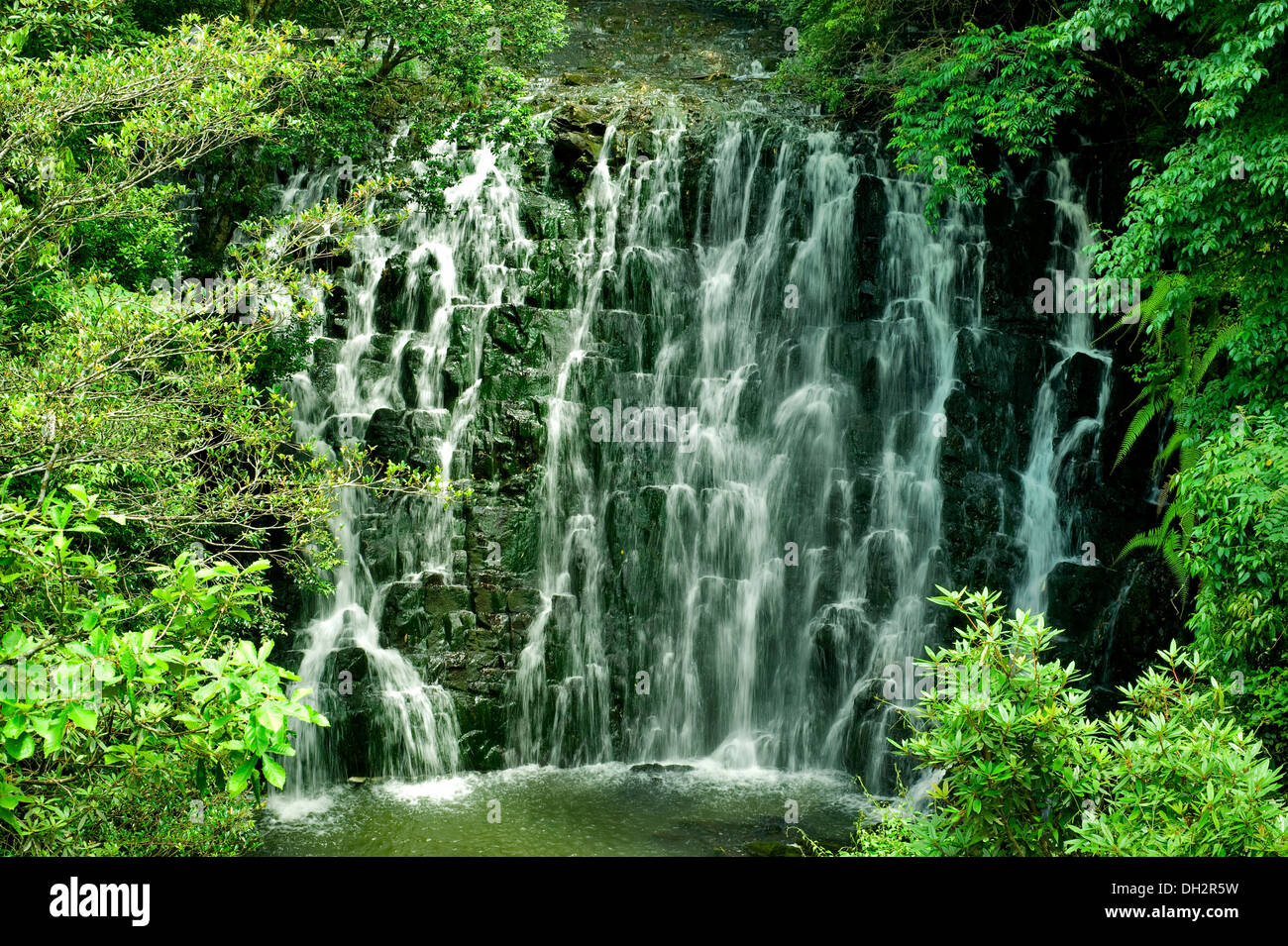 Stock Nature Footage Free