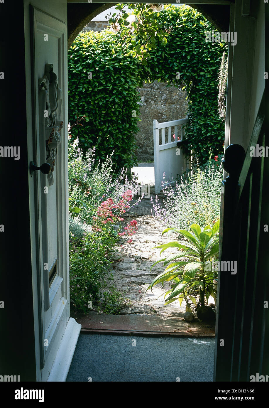 Door open to cottage garden with lavender and pink for Back door with window that opens