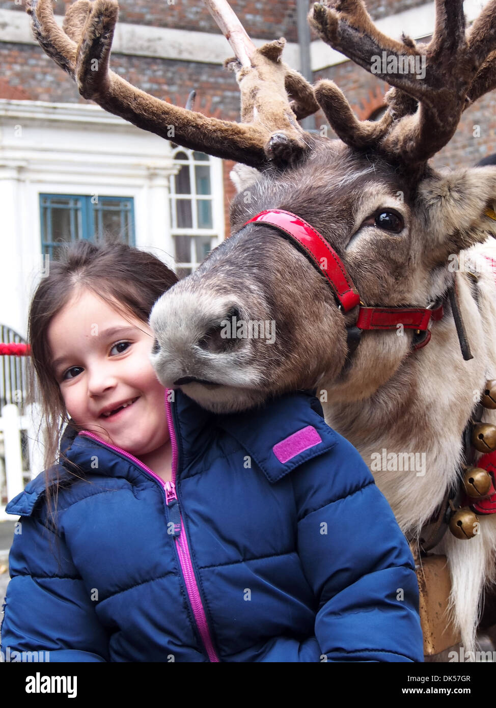 a-reindeer-making-friends-with-a-young-girl-DK57GR.jpg