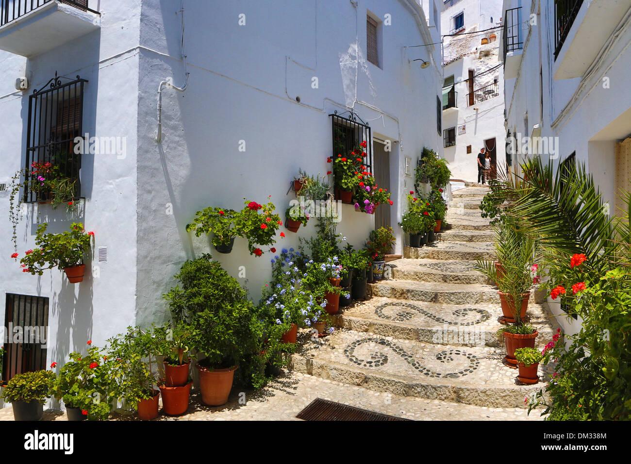 Frigiliana malaga andalusia city flowers pueblo spain for Casa jardin nerja