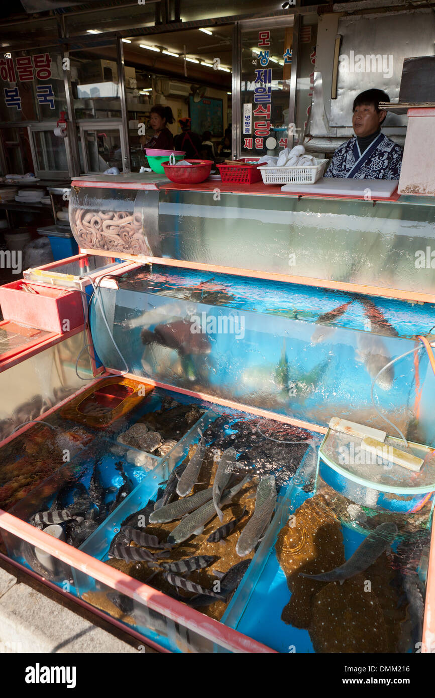 Live fish tank display in front of seafood restaurant at for Stock tanks for fish
