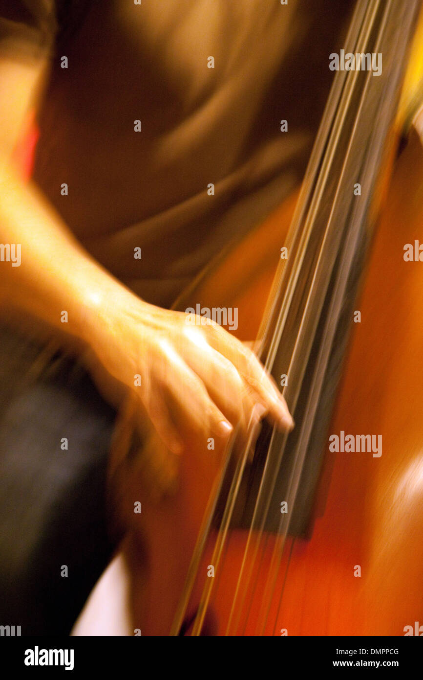 double-bass-player-playing-his-instrumen