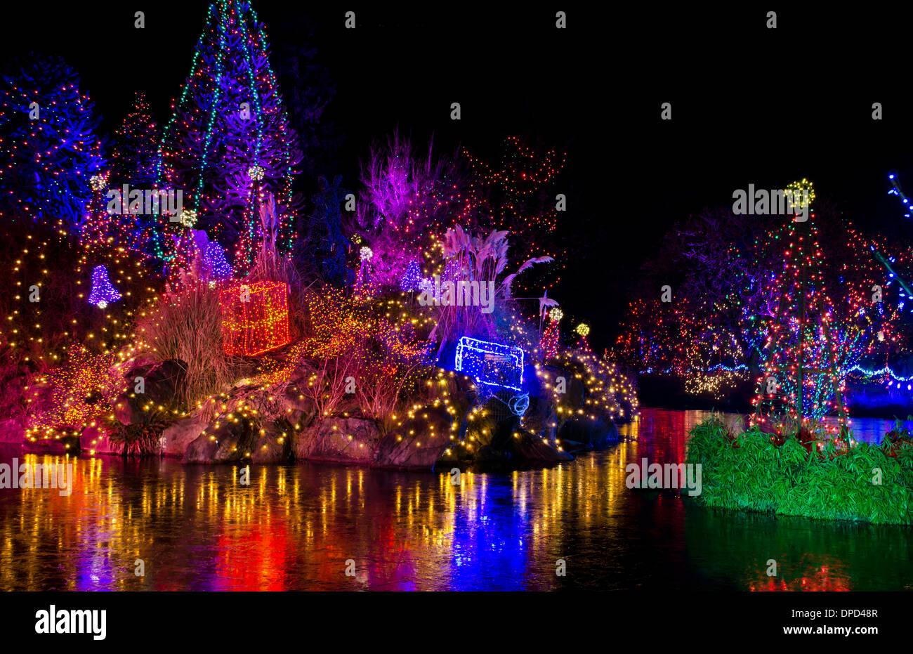 Beautiful Colourful Holiday Light Show At Van Dusen Botanical Gardens Stock Photo Royalty Free