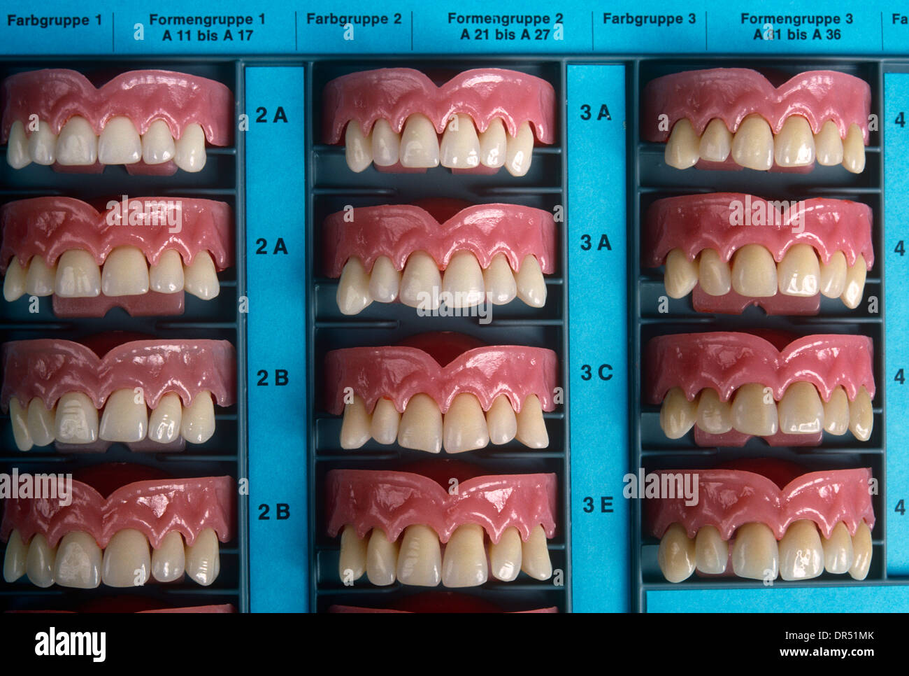 acrylic-teeth-samples-displayed-at-ivocl