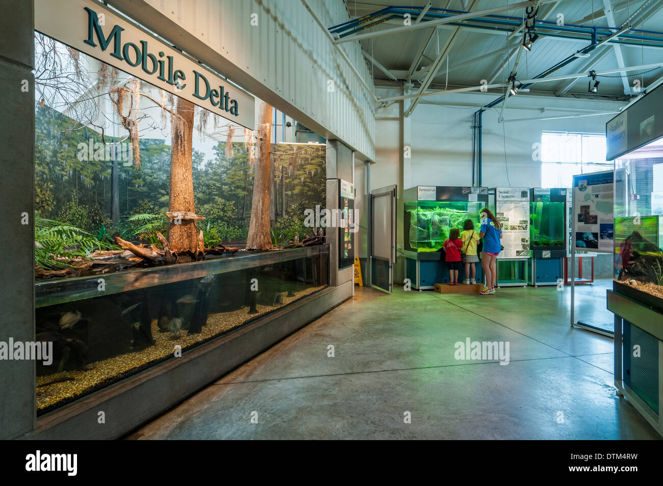 Inside The Estuarium Dauphin Island Alabama Stock Photo