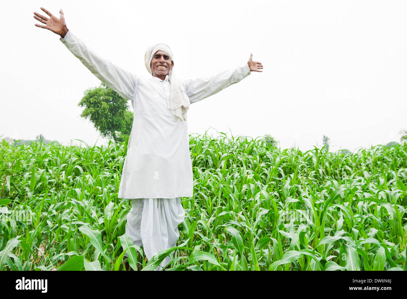 1 Indian farmer standing and looking to sky Stock Photo ...