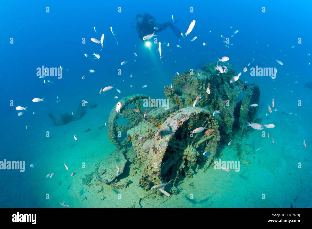 Tractor next to Taranto Wreck, Adriatic Sea, Croatia Stock ... Pictures Gobiidae Adriatic Sea