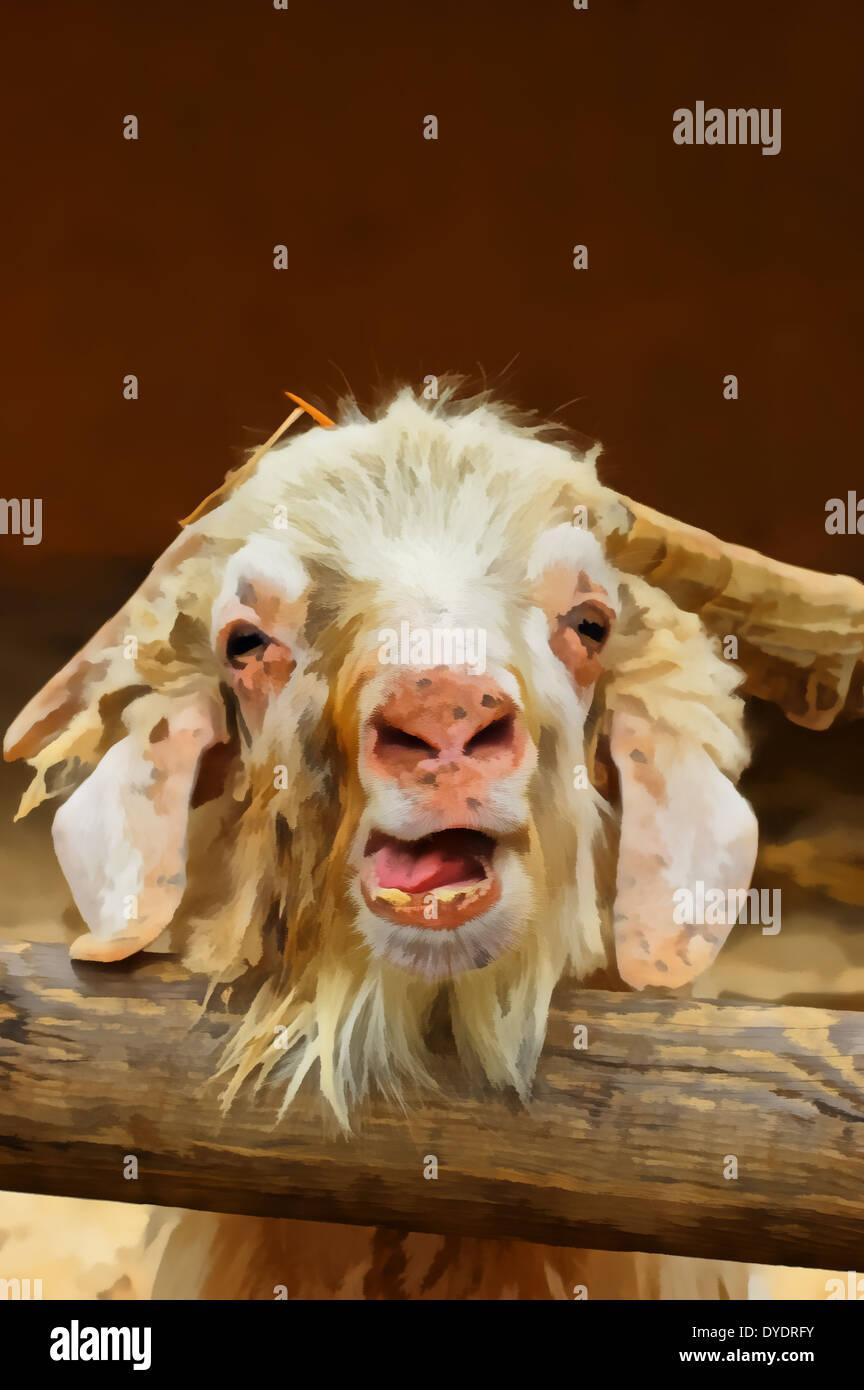 Bovids VI: Sheep, Goats, and Relatives (Caprinae ...