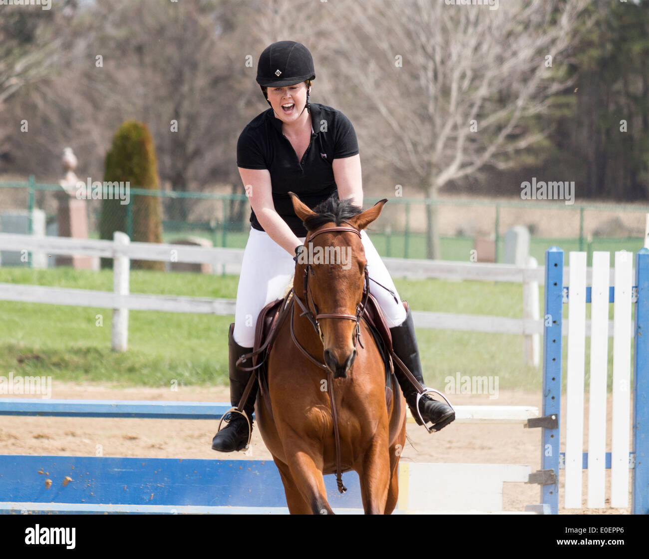 woman-riding-bay-horse-over-jump-at-local-schooling-horse-show-E0EPP6.jpg