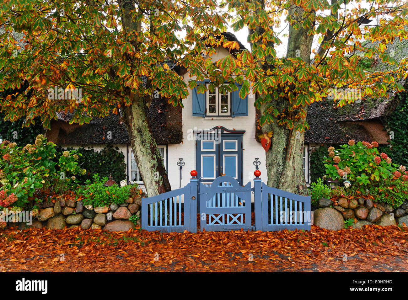 germany typical house gate fence deutschland schleswig holstein stock photo royalty free. Black Bedroom Furniture Sets. Home Design Ideas