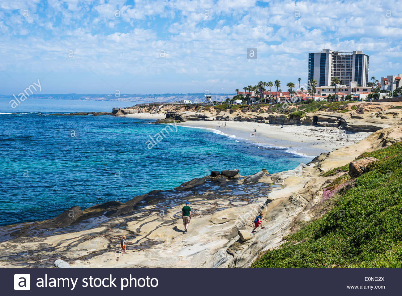 La Jolla Coastline And Wipeout Beach In The Background. La