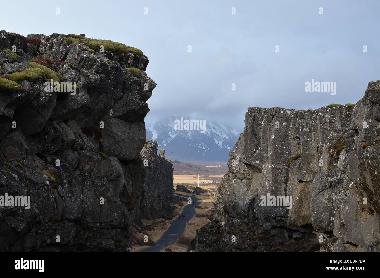 The Almannagjá rift between the American and Eurasian tectonic plates at Þingvellir, Iceland. Stock Photo