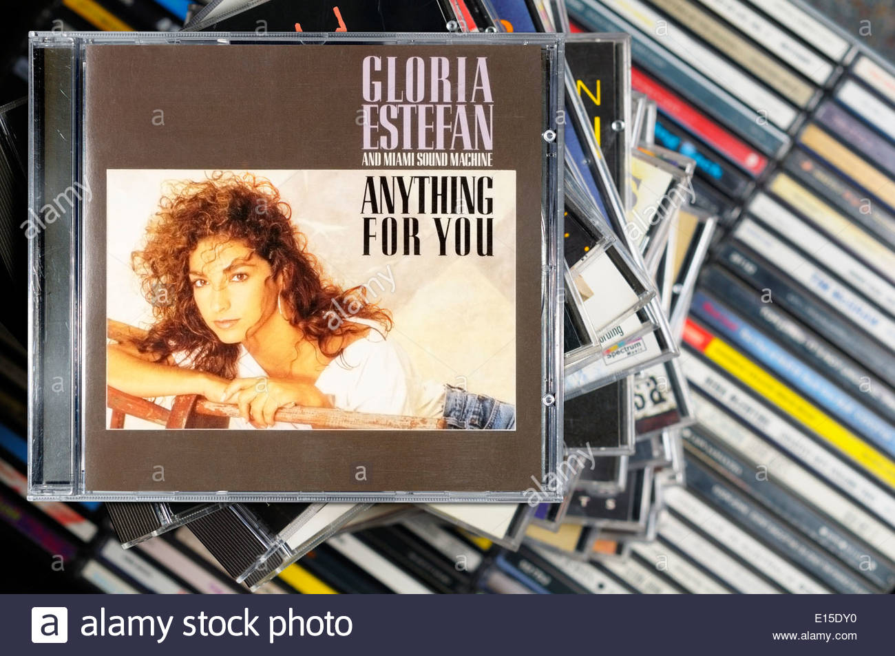 miami sound machine anything for you