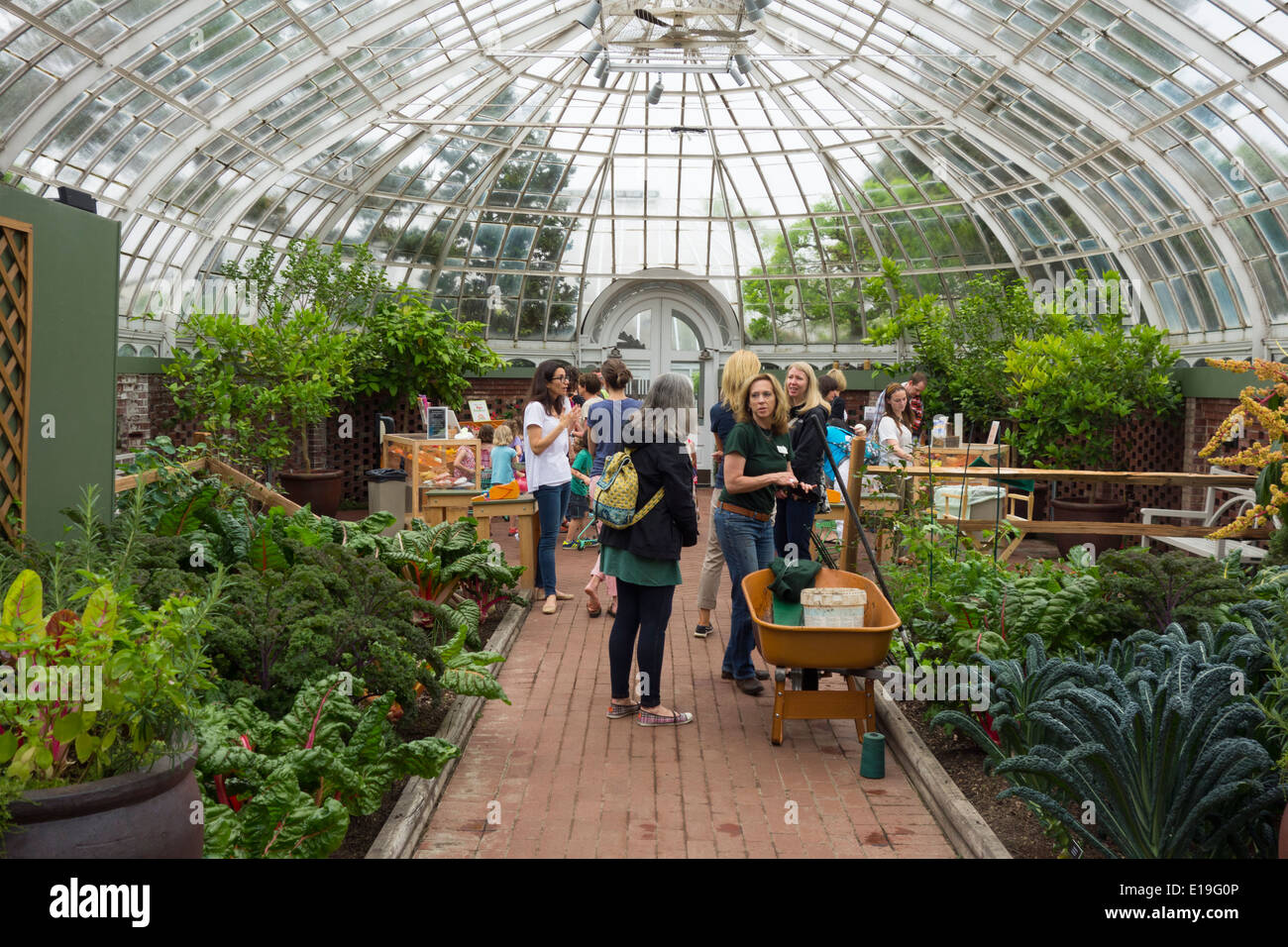 Phipps Conservatory And Botanical Garden In Pittsburgh Pa Stock Photo Royalty Free Image