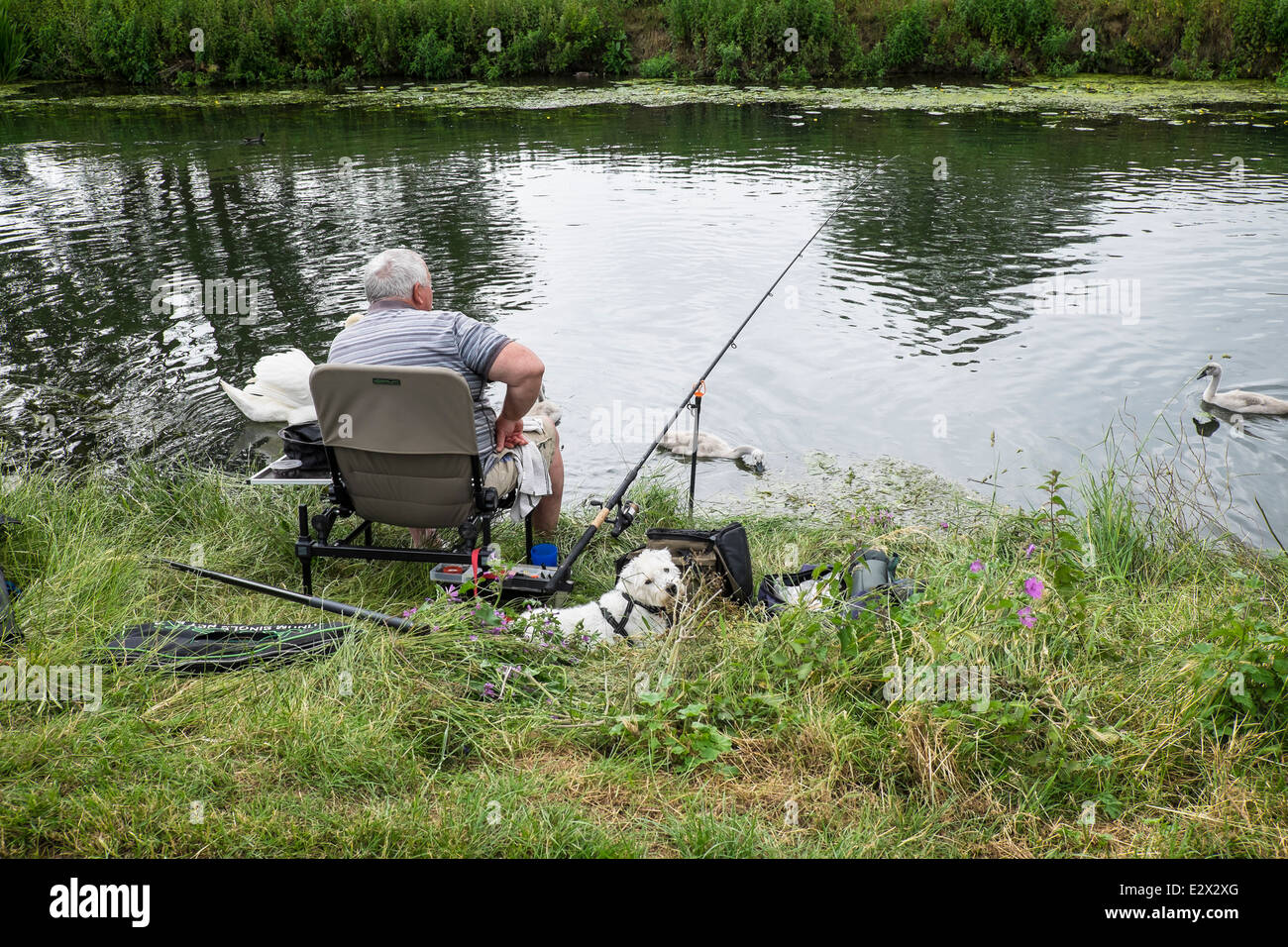 fisherman-and-friend-being-pestered-by-s