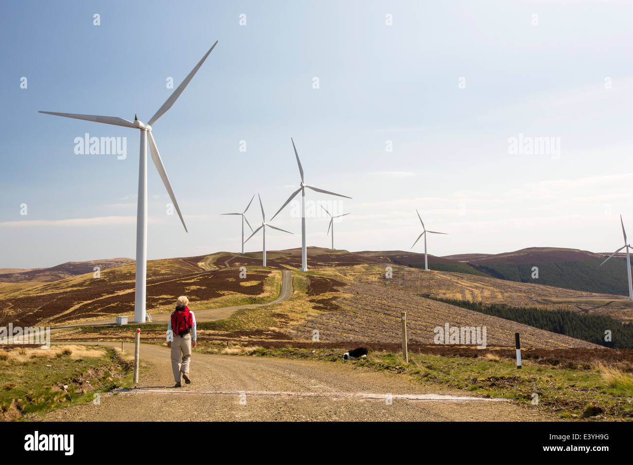 The Clyde Wind Farm in the Southern Uplands of Scotland near Biggar. It is one of europes largest incorporating Stock Photo