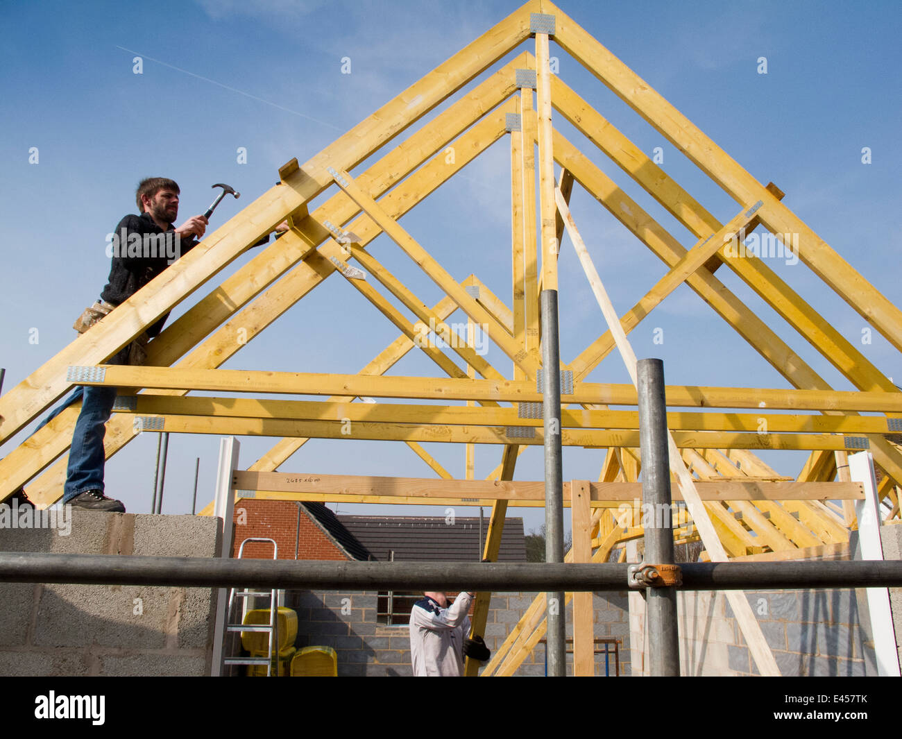 Self building house constructing roof joiner fixing roof for Buy roof trusses online