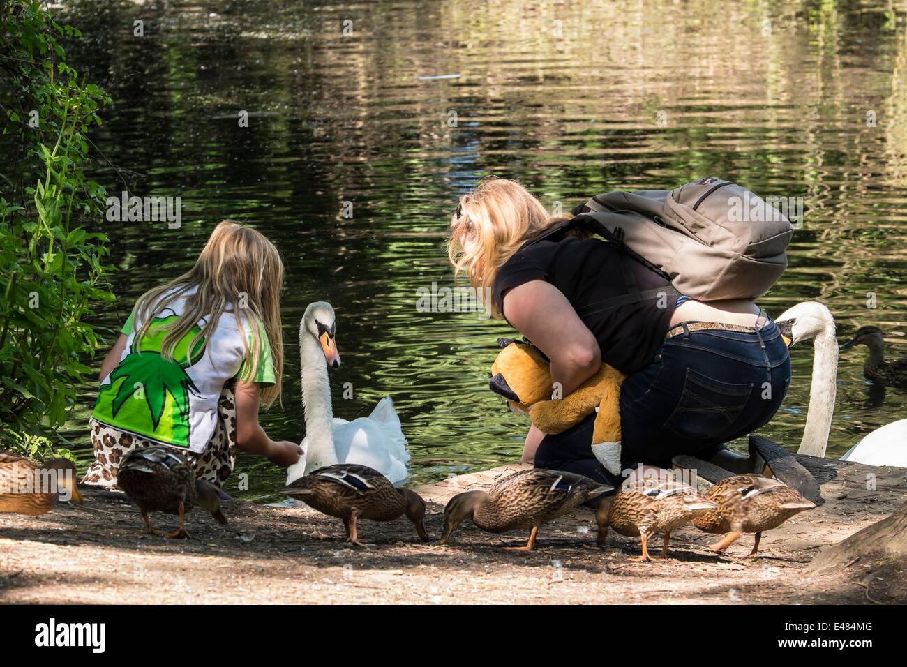 feeding-the-swan-milton-cambridgeshire-e