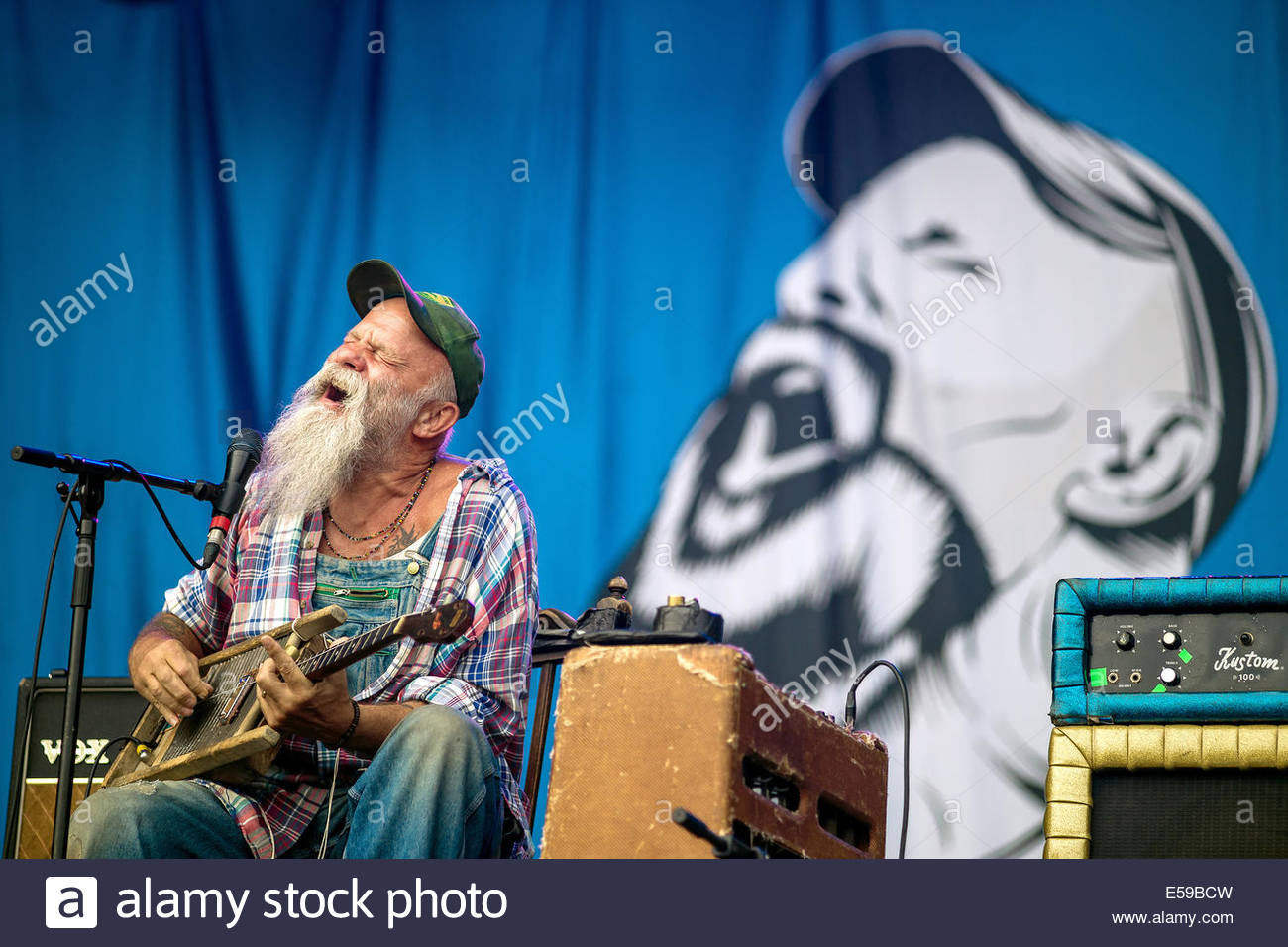 seasick-steve-performing-live-E59BCW.jpg