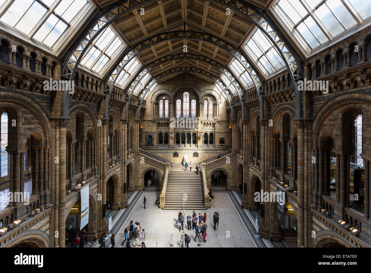 Interior of Natural History Museum in London, England, United Kingdom Stock Photo