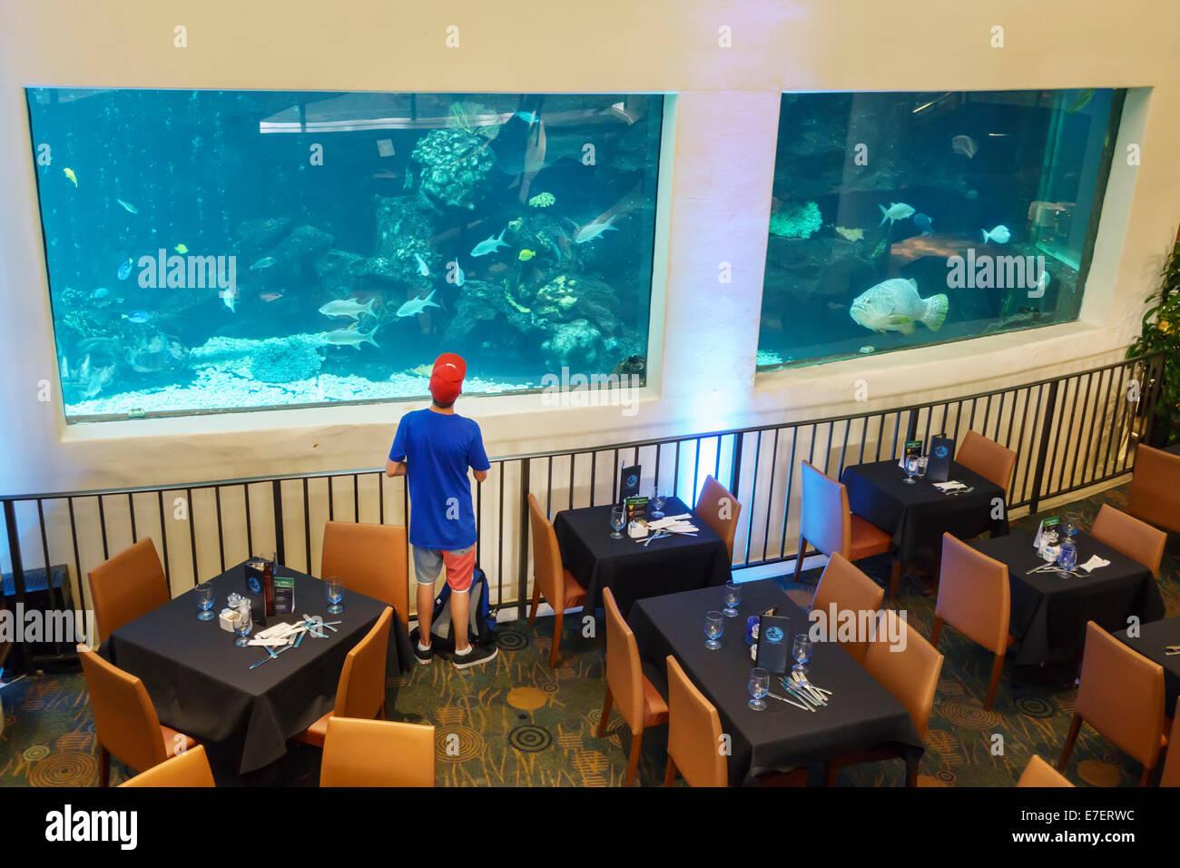 Restaurant Francais A Hawaii