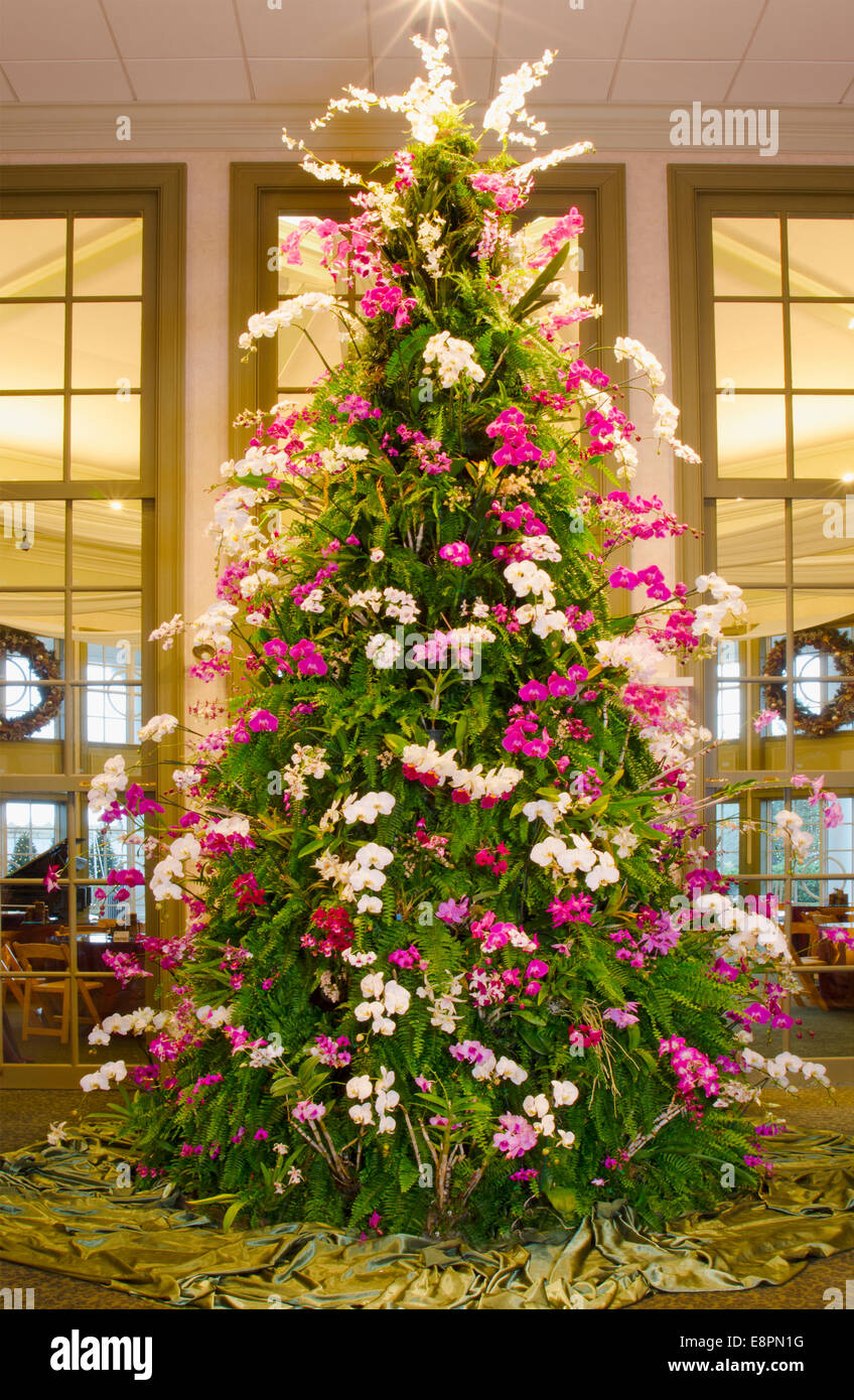 This spectacular Christmas Tree is made of tropical plants ...