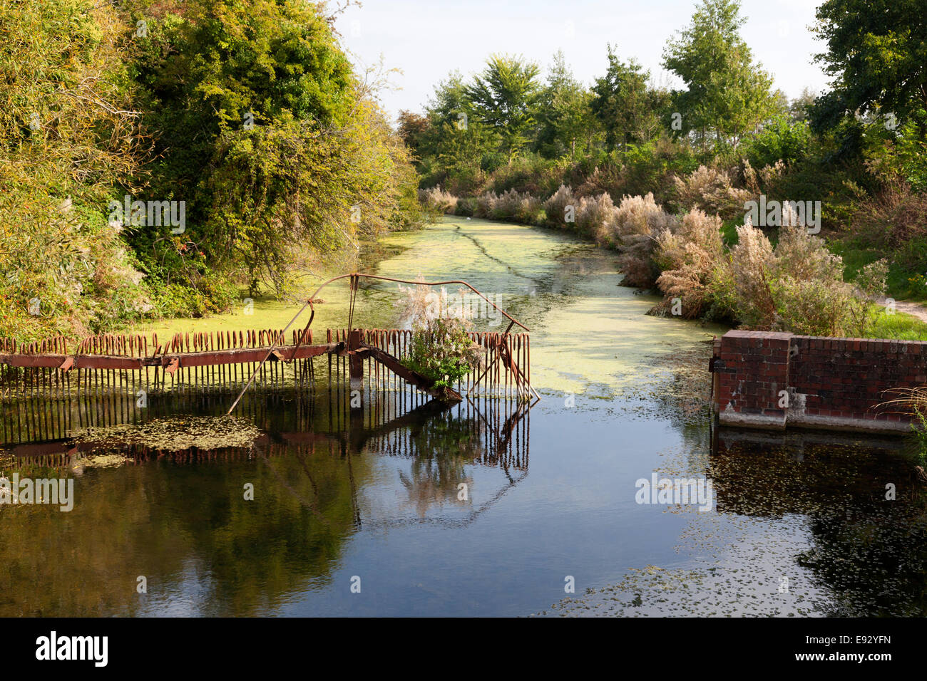 disused-section-of-the-chichester-canal-apuldram-west-sussex-E92YFN.jpg