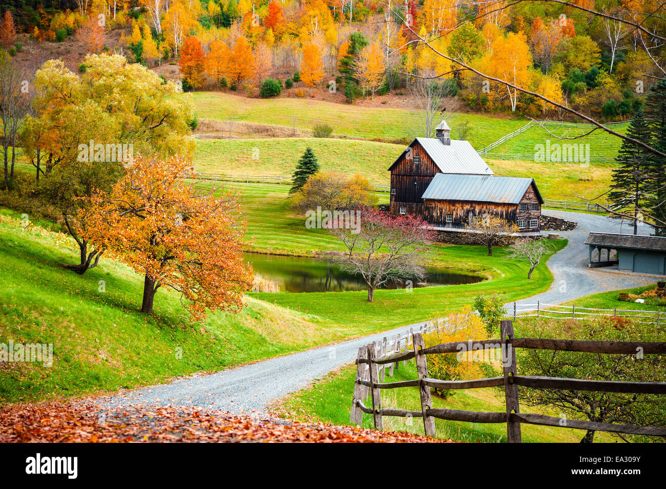 Fall Foliage New England Countryside At Woodstock