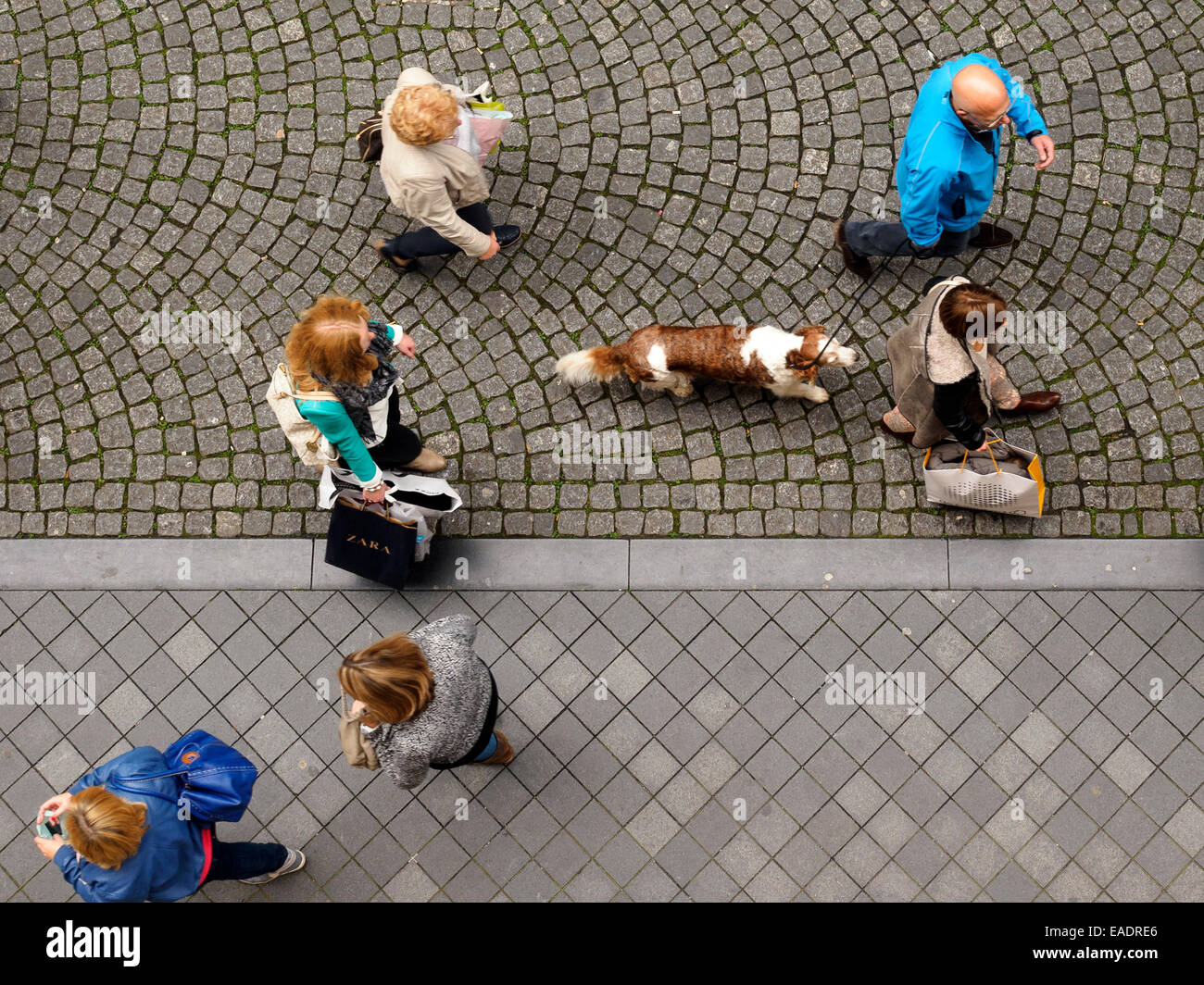 Aerial view of people walking their dog on a leash Stock ...