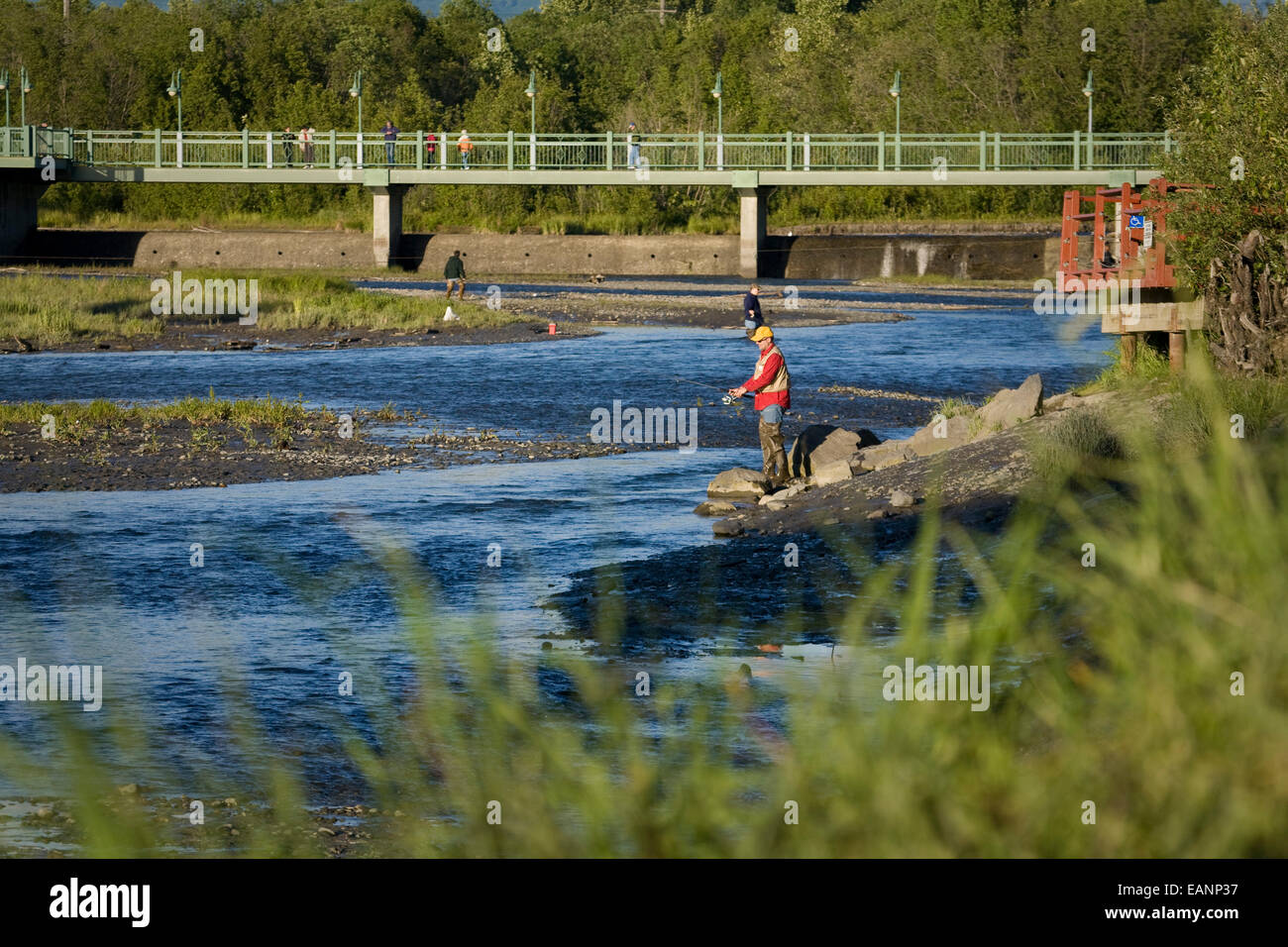Fisherman fishes for king salmon in ship creek in downtown for Salmon fishing anchorage