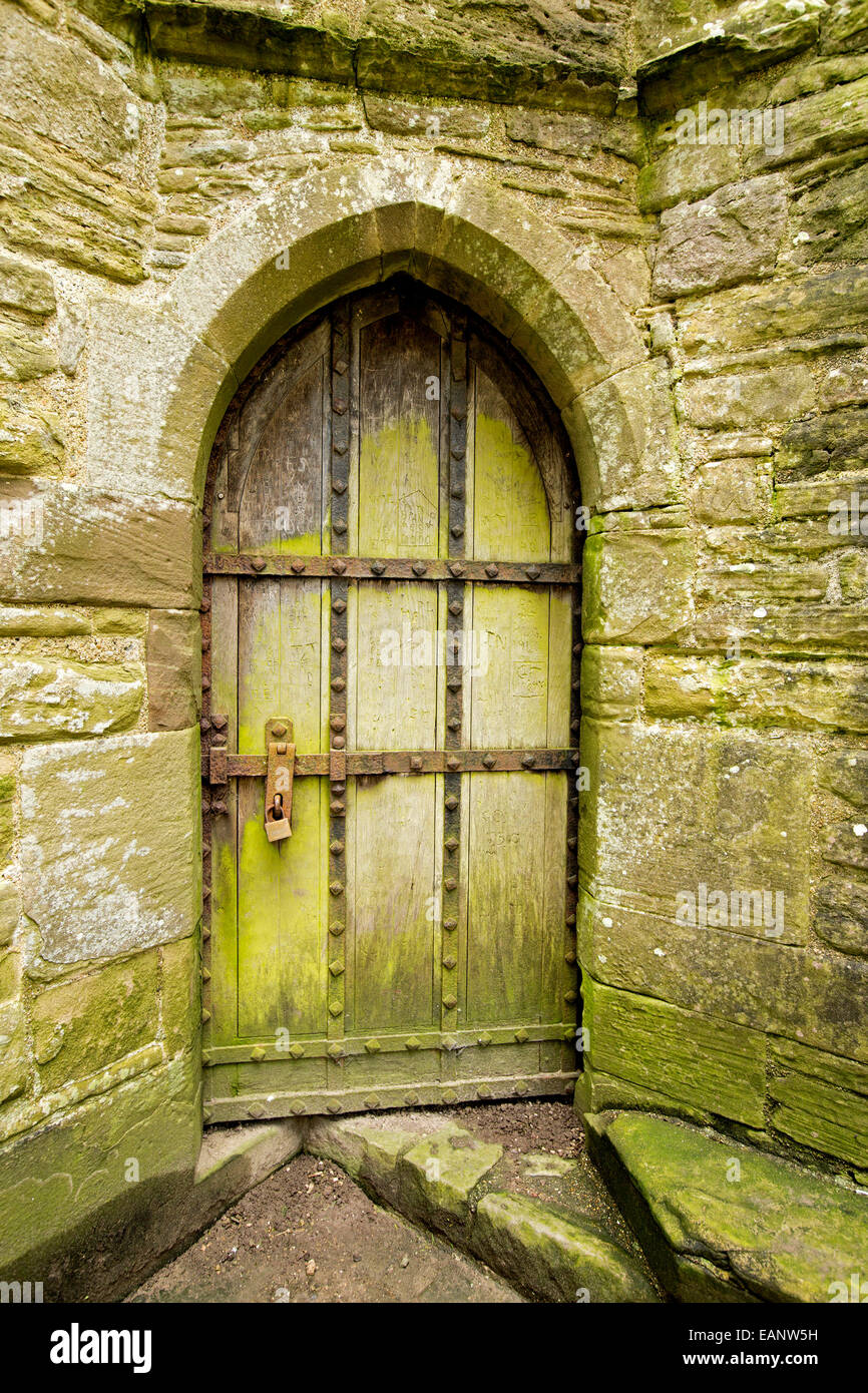 Old Arched Wooden Door Coated With Green Mould