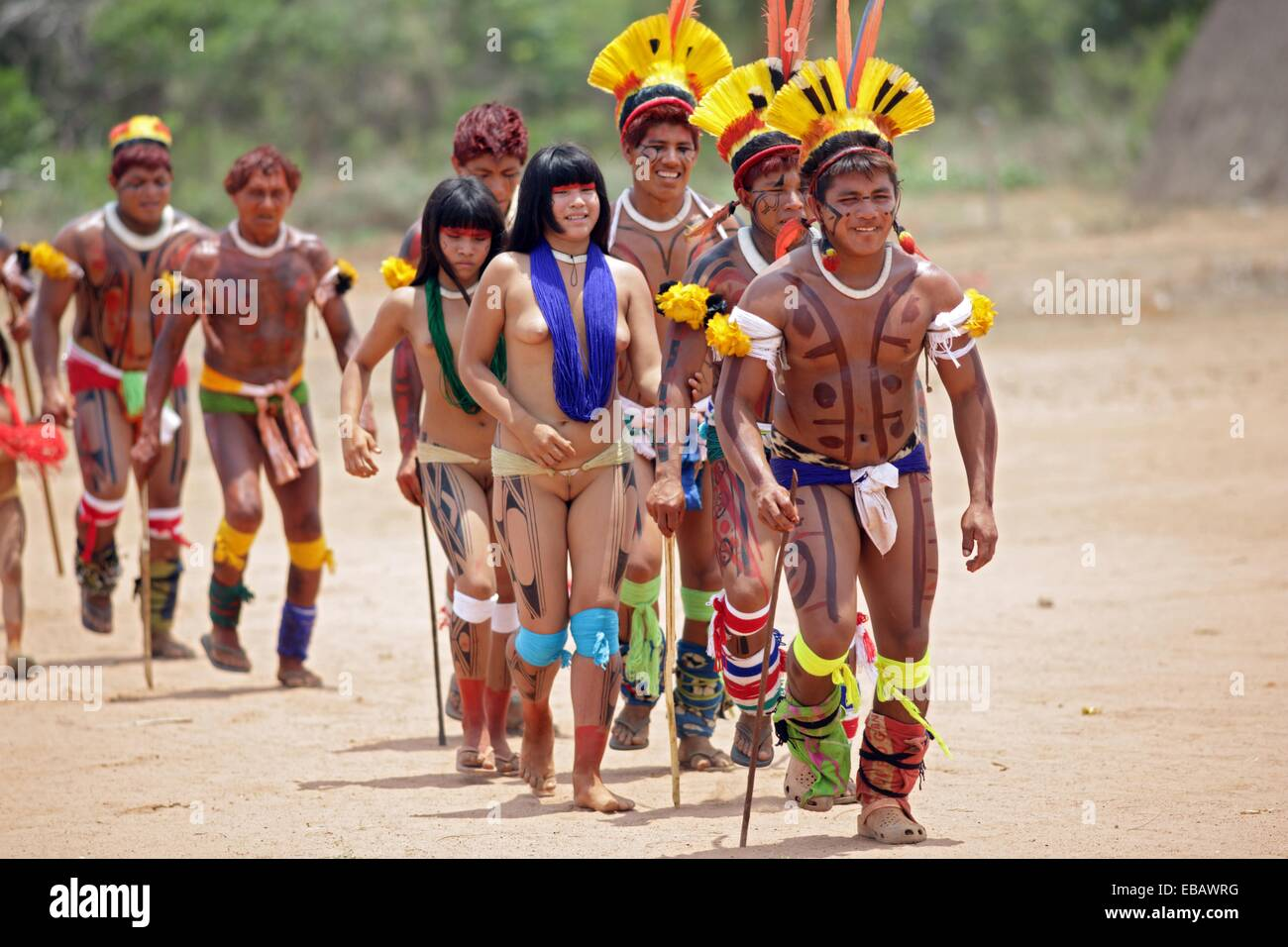 an introduction to the kalapalo indians of central brazil in south america