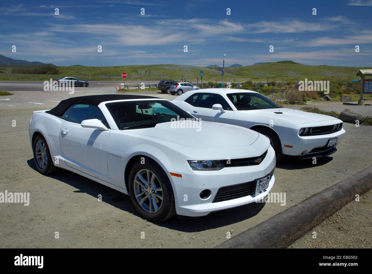 chevrolet comaro and dodge challenger sports cars by pacific coast stock photo royalty free. Black Bedroom Furniture Sets. Home Design Ideas