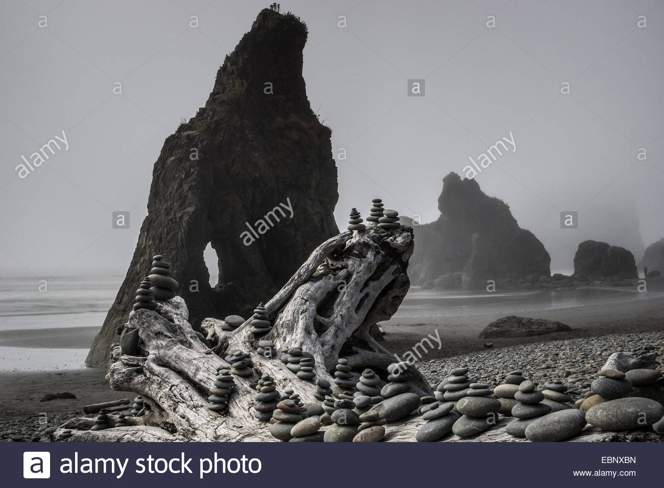 mist-over-ruby-beach-in-olympic-national