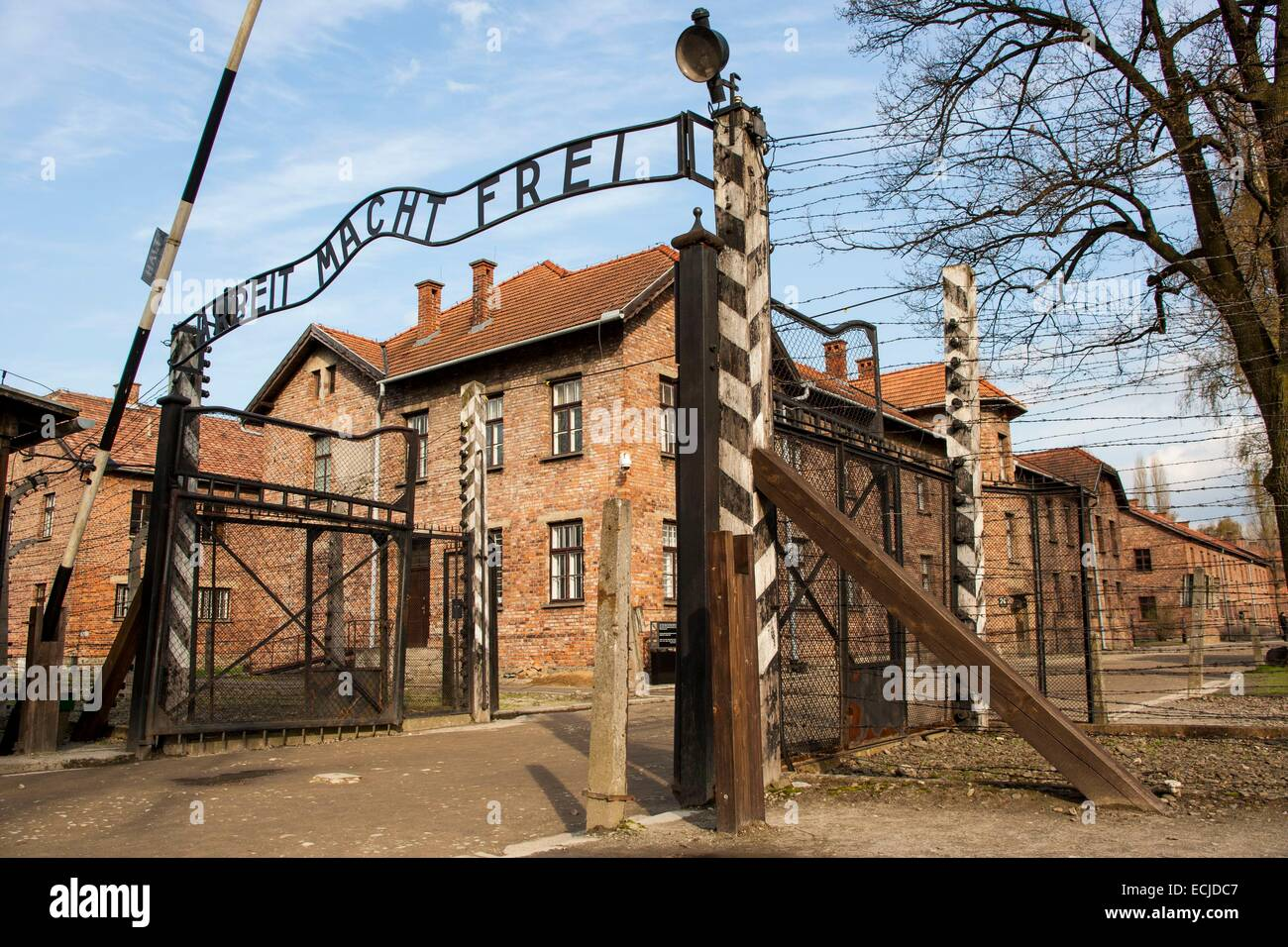 a history of auschwitz nazi concentration camp in poland The exact address and equipment arrays of the key ibm offices and customer sites in nazi-occupied poland have been discovered but no one also known as monowitz concentration camp auschwitz' setkiewicz explains history of auschwitz auschwitz ii.