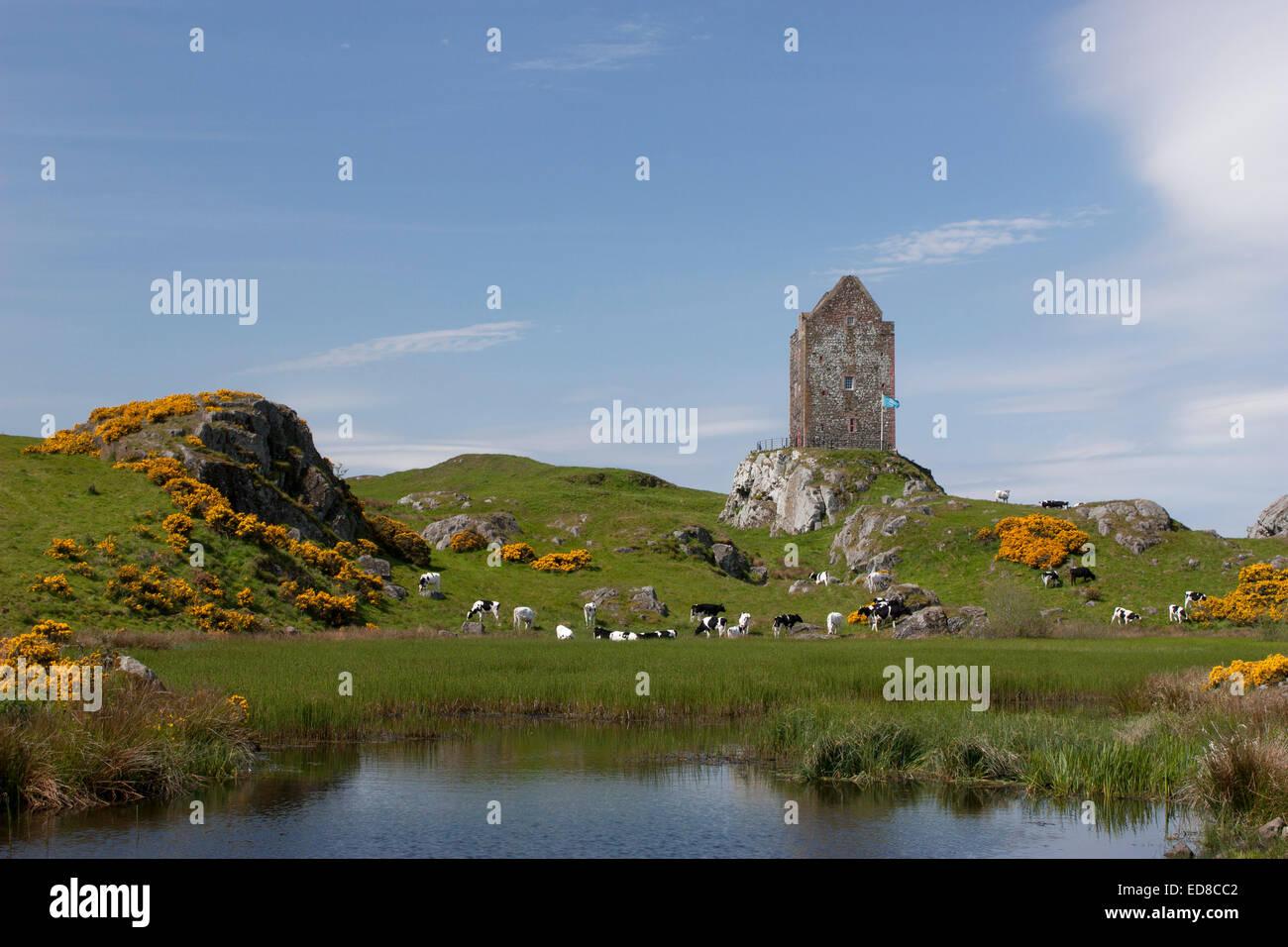 Kelso United Kingdom  city photos gallery : United Kingdom, Scotland, Roxburghshire, Kelso, Sandyknowe Farm Stock ...