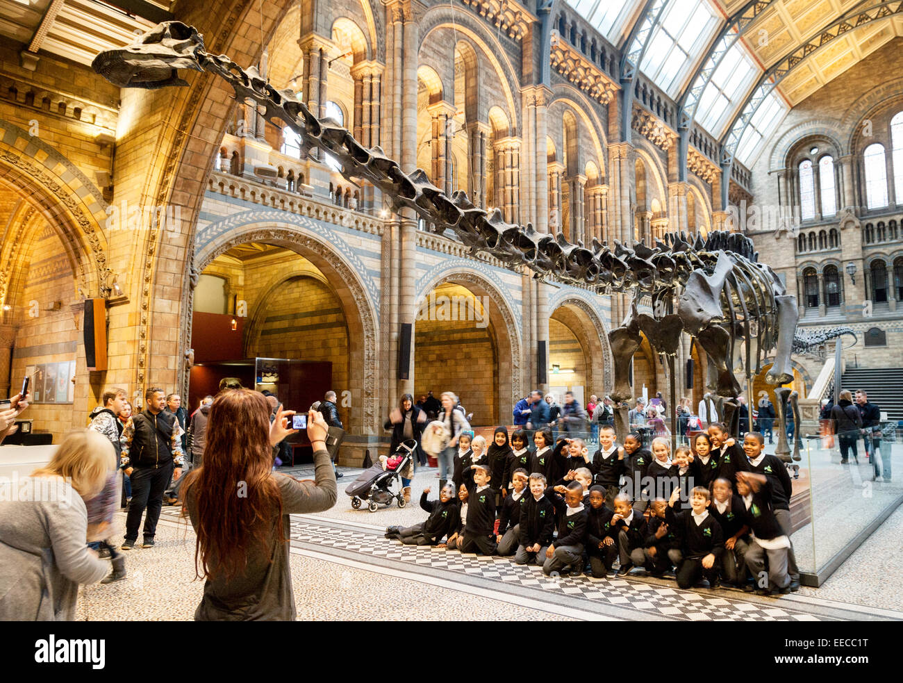 Natural History Museum Location London