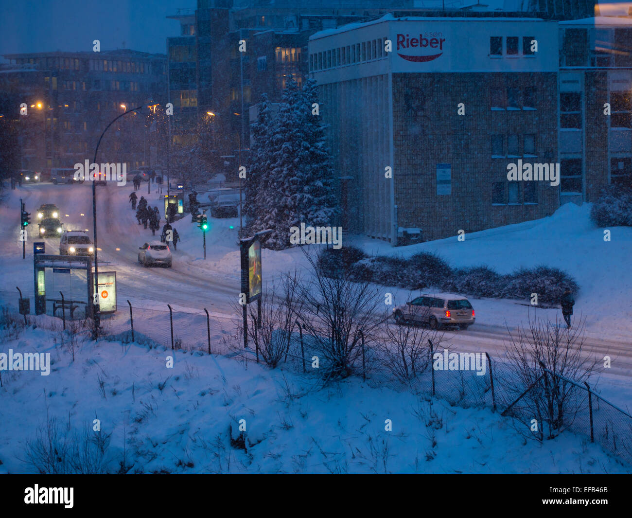 blue-hour-early-winter-morning-in-brynse