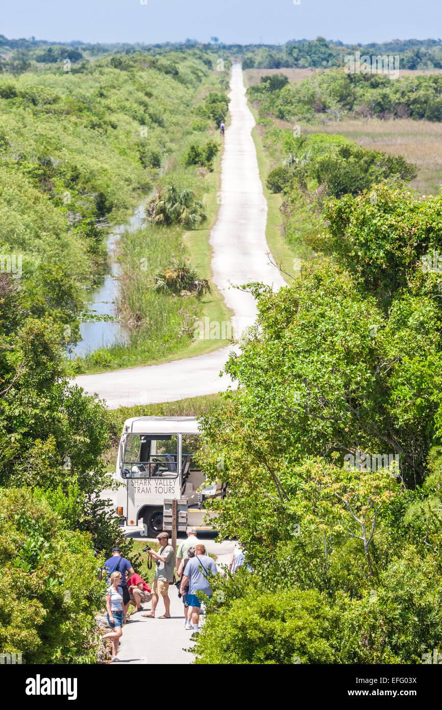 http://c7.alamy.com/comp/EFG03X/shark-valley-tram-loop-road-from-shark-valley-everglades-visitors-EFG03X.jpg